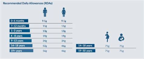 protein rda rda calories healthy breakfast lunch and dinner