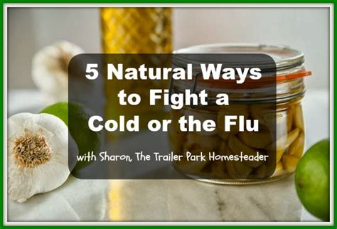 8 Tips To Fight A Cold by The Trailer Park Homesteader 5 Ways To Fight A