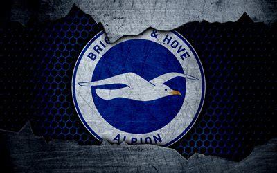 wallpapers brighton  hove albion fc  football premier league emblem logo