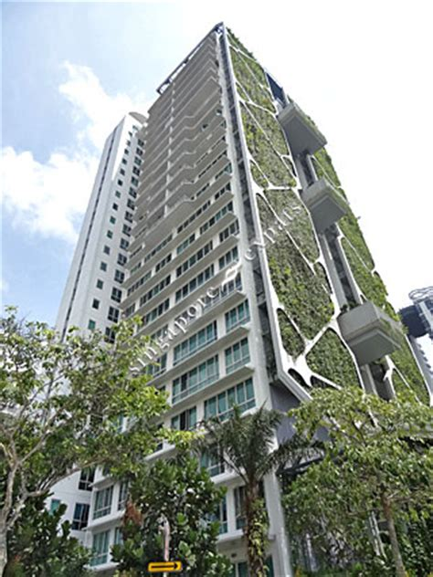 novena for buying a house singapore condo apartment pictures buy rent tree house at 60 68 chestnut avenue