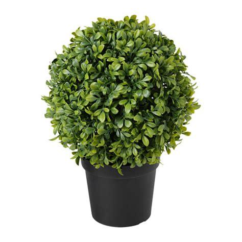 vasi piante ikea fejka pianta con vaso artificiale ikea