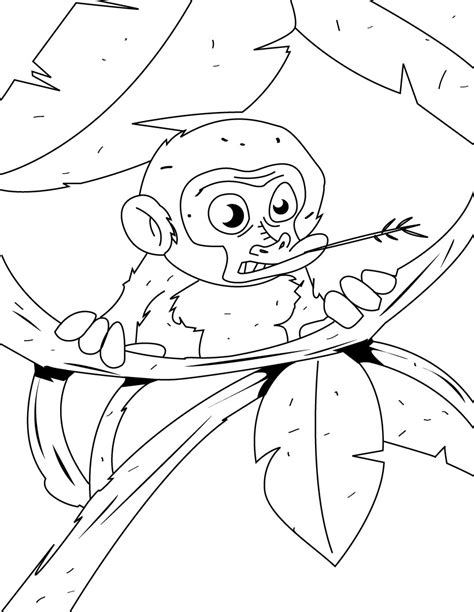 coloring pages of sock monkey free printable monkey coloring pages for kids