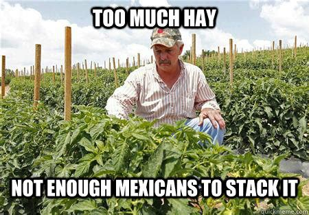 Farmer Meme - too much hay not enough mexicans to stack it first world
