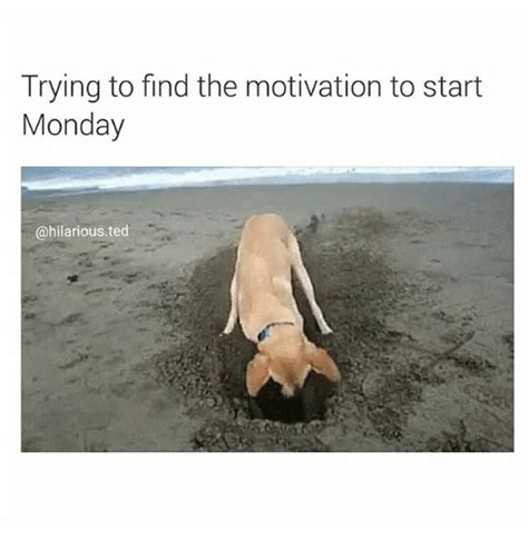Trying To Find Motivation Meme