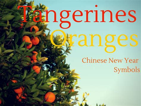 why eat oranges at new year tangerine and orange new year symbols
