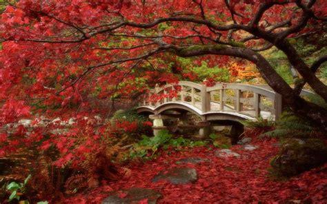imagenes paisajes japoneses hd jardin japones imagenes wallpapers paisajes fondos