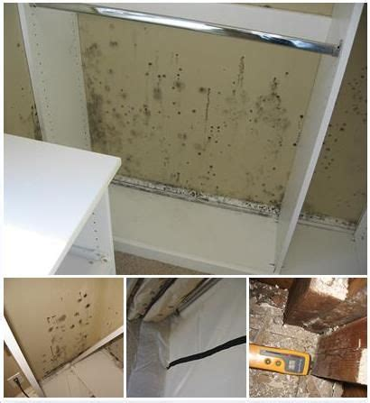 mold in bedroom closet 17 best ideas about basement doctor on pinterest doctor