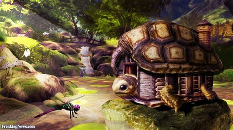 turtle house in the forest pictures freaking news