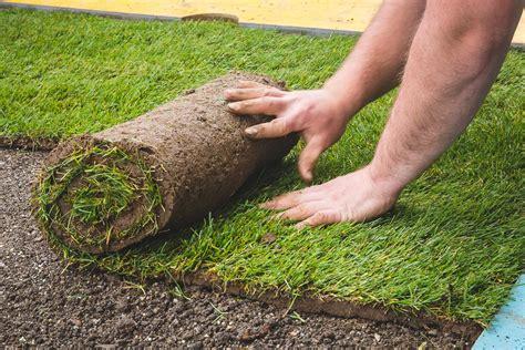 diventare giardiniere professionista giardiniere giardino cfp cpv 2 img 2043 45 le clin