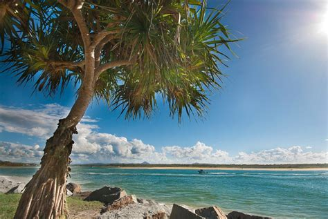 the worlds best cities for surfers noosa stab magazine noosa australia pictures and videos and news citiestips com