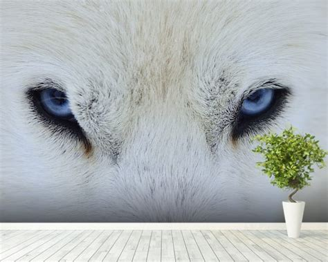 wolf wall murals wolf wall mural wolf wallpaper wallsauce