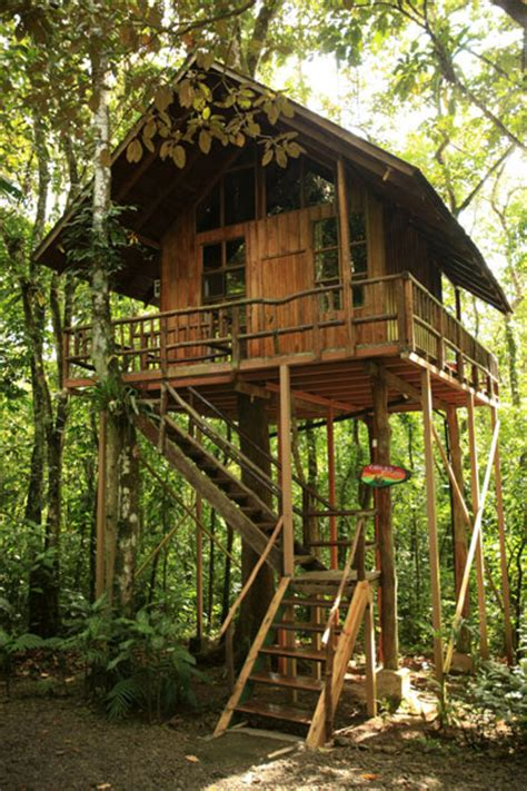 tiny tree house tree house the tiny life tree house