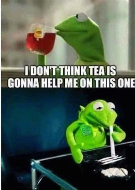 Kermit Meme - the best of the that s none of my business kermit meme