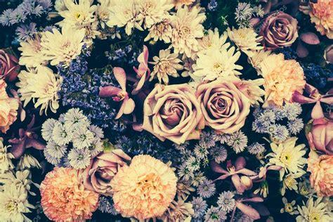 imagenes de flores vintage fondo de flores vintage foto de stock 64228311