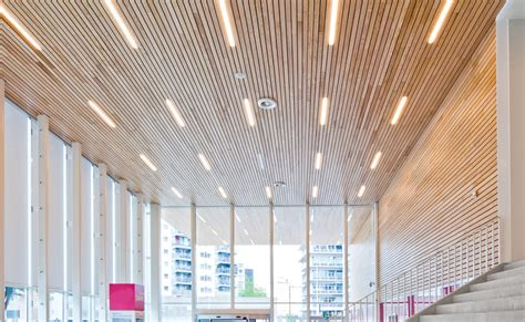 Spray Acoustic Ceiling by Stil Acoustics Timber Acoustic Panels Seamless