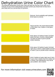 what color should urine be dehydration urine color chart ruggedthug