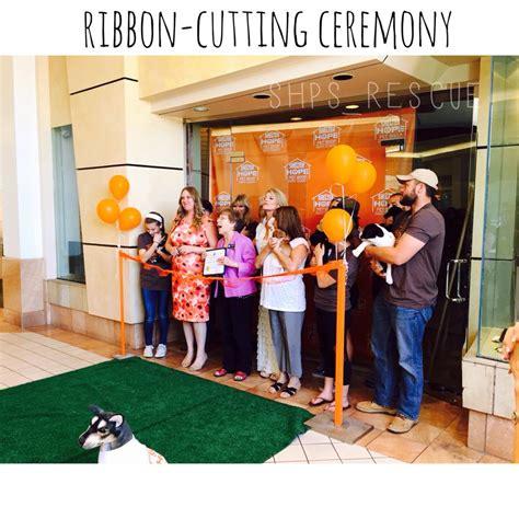 puppy store santa ca creating a new breed of pet stores shelter pet shop santa clarita project