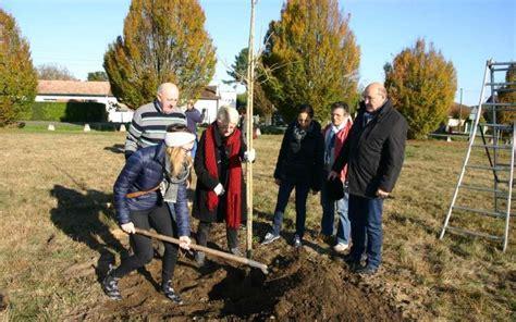 Plantation De Novembre by Les Plantations De Novembre Sud Ouest Fr