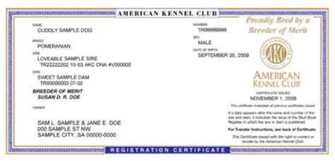 akc registration for more information on the american kennel club akc and why registering with them