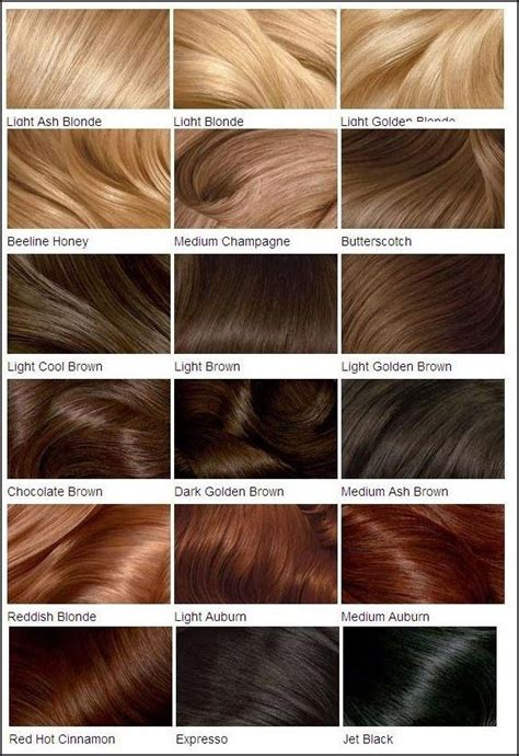 Types Of Light Brown Hair by Best 20 What Are Lowlights Ideas On