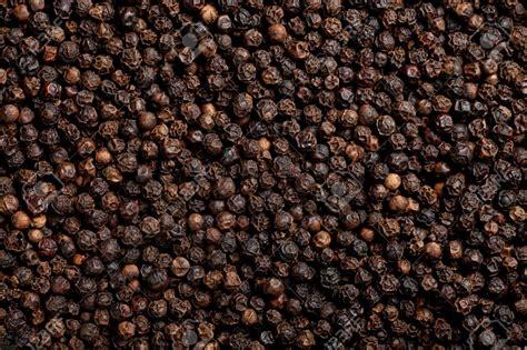 black pepper black pepper pramoda exim corporation