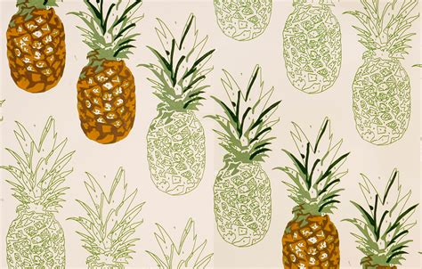 Wallpaper Stiker Motif Yellow Colour Flower Ukuran 45 Cm X 10 M pineapple wallpapers gallery of 43 pineapple backgrounds