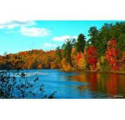 Nature Latest Windows 7 Hd Wallpapers Of