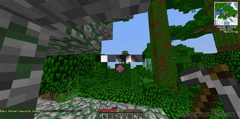 reis minimap mod for minecraft 181710172164 rei s minimap v 3 6 1 7 10 mods mc pc net