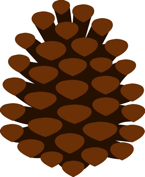 immagini clipart gratis pine cone clipart cliparts co
