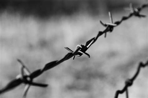 file barbed wire on a moto ride bw jpg