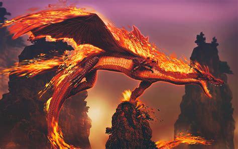 wallpaper 4k dragon fire dragon wallpaper 4k hd download for desktop of