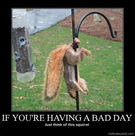 Having A Bad Day Meme - forum 419eater com view topic 419 scammer gets