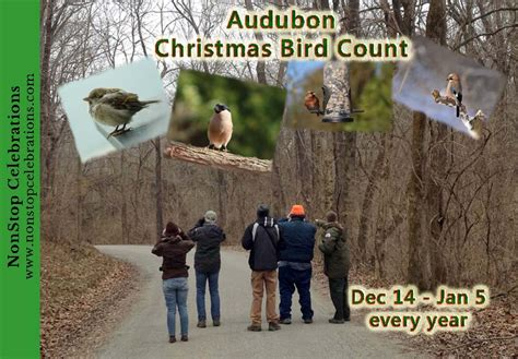 Audubon Backyard Bird Count by Animal Awareness Archives Nonstop Celebrations