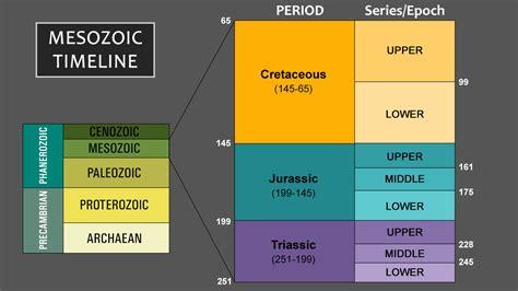 mesozoic era mesozoic era timeline and important facts