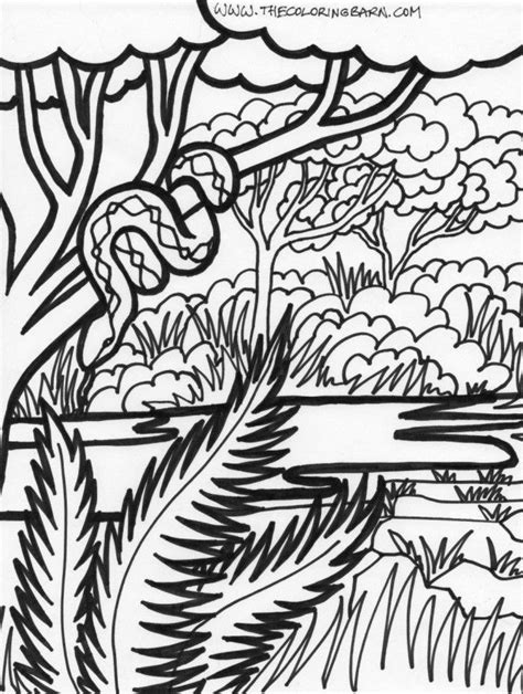 Easy Rainforest Coloring Pages by Forest Coloring Pages Coloring Home