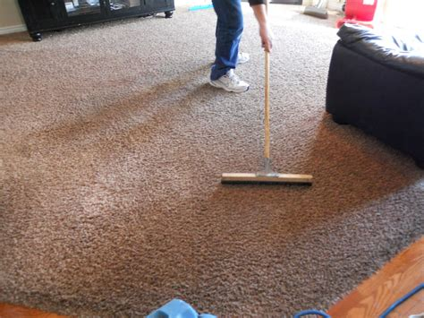 upholstery cleaning utah alpine professional carpet care utah county carpet cleaners