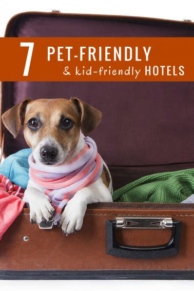 7 Kid Friendly Pets by 7 Great Hotel Chains For Pet Friendly Travel Trekaroo