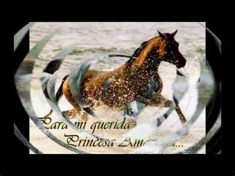 imagenes de feliz cumpleaños con caballos feliz cumplea 241 os querida amiga un 1 de marzo naci 243 una
