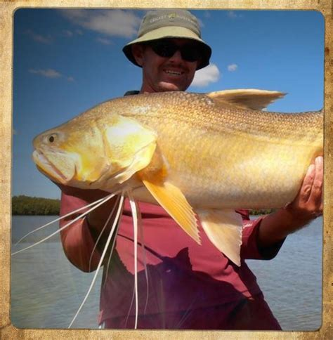 offshore boats mitchell act fishing charters gladstone fishing tours central