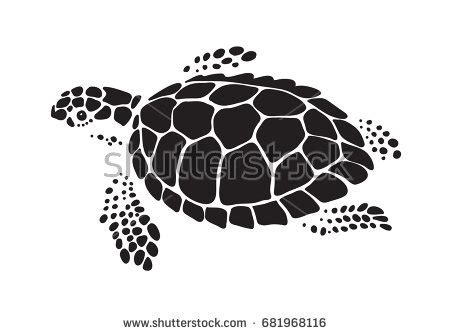 Turtle Outline Vector by Turtle Vector Stock Images Royalty Free Images Vectors