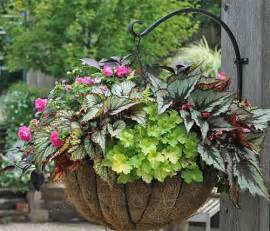 how to create sensational pots and planters container