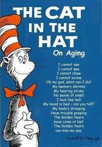 cat in the hat poem
