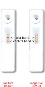 at home hcg test pregnancy test