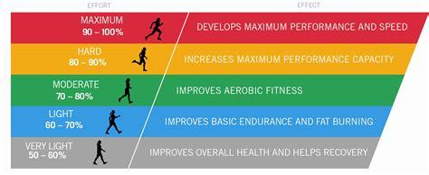 born rate definition cardio stone athletic medicine