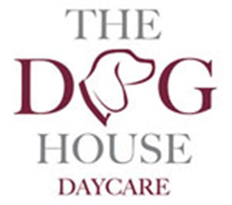 dog house doggie daycare the dog house daycare dog walking pet sitting home boarding in newmarket ely