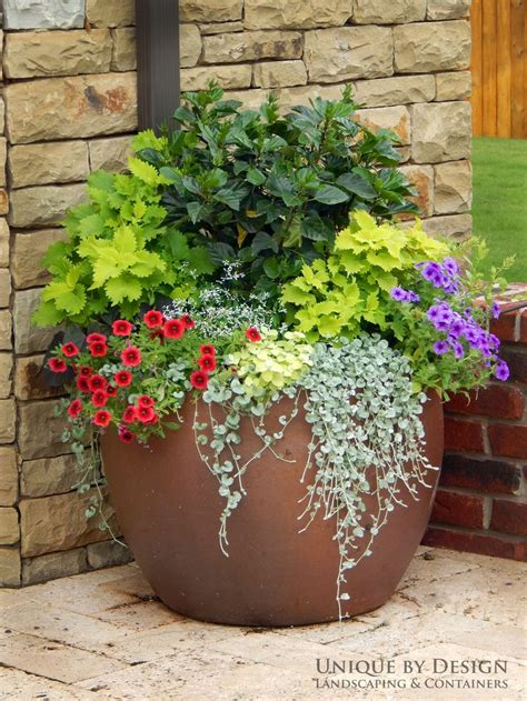 1725 Best Container Gardens Images On Pinterest Garden Potted Plant Garden Ideas