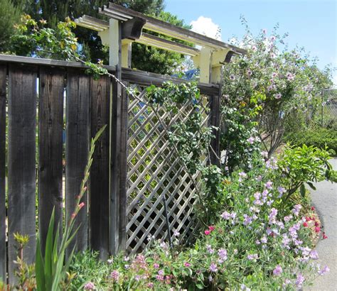 Cedros Gardens by Back To Larkrise May 2012