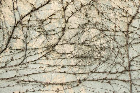 wall texture 20 by agf81 on deviantart wall texture 14 by agf81 on deviantart