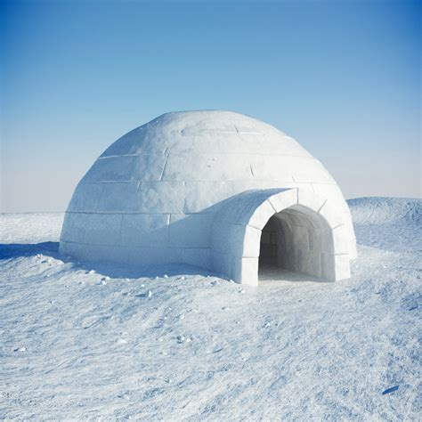 igloo house igloo snow 3d model