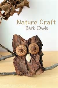 Bark owl craft lesson plans